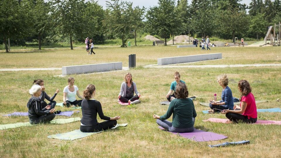 13 Vogelkamp Neugraben Yoga im Park